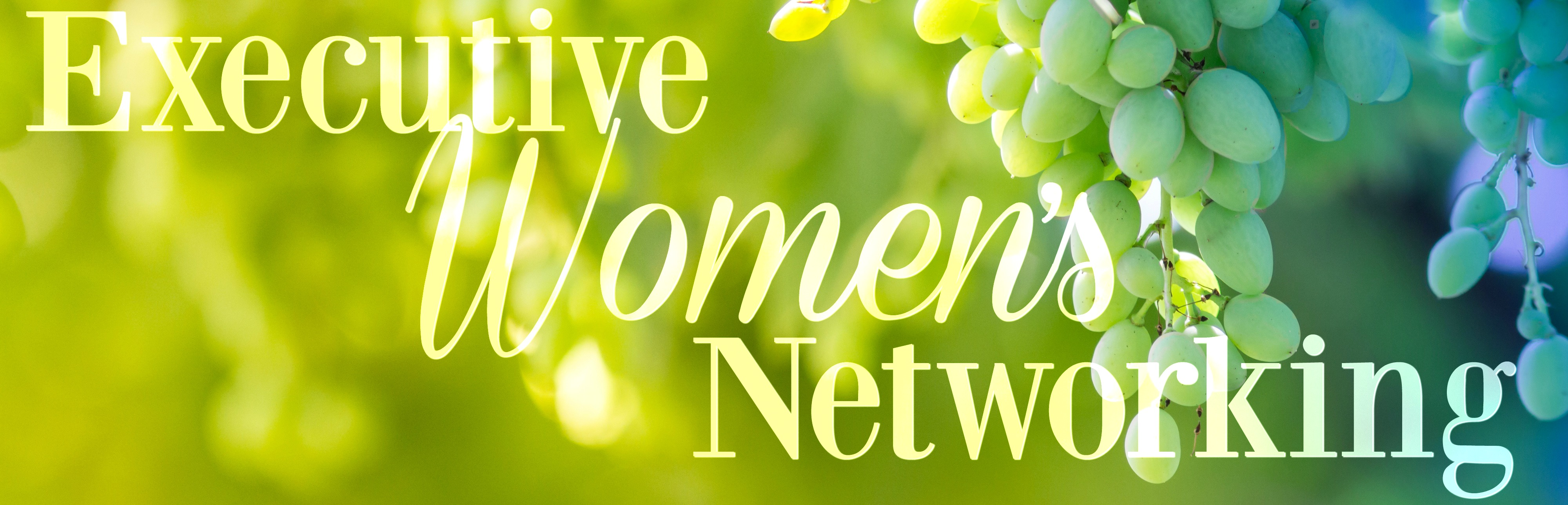 Executive Women's Networking